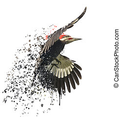 Pileated Woodpecker Watercolor - Digital Painting of...