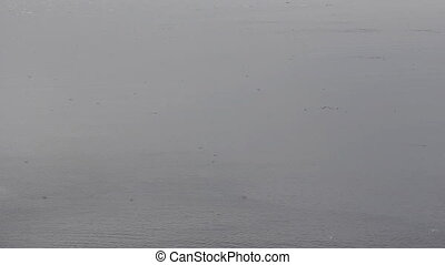 This Is Arctic cold foggy Barents sea, drift ice and...