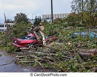 Hurircane damage - Big tree falls and destroying a parked...