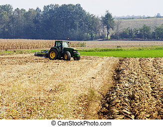 Tractor on the fields