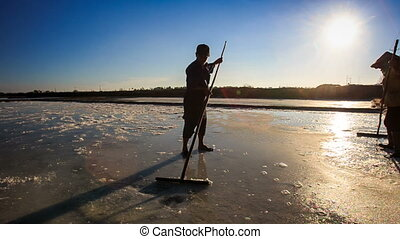 Men Silhouettes Work on Salt Field at Sunset