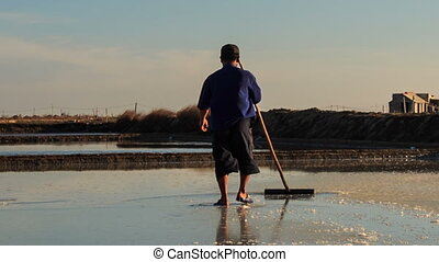 Backside Men Work on Salt Field at Sunset - MUI NE, BINH...