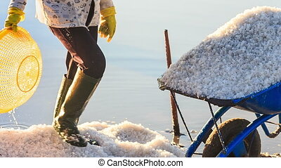 Closeup Wheelbarrow Full of Salt by Man with Basket - MUI...