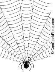Silhouette of spider in web