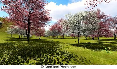 Spring orchard animation - Spring time orchard animation...