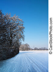 Tranquil winter scene - Empty road in tranquil winter scene...