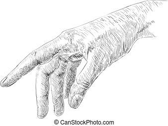 Human hand - Hand drawn human hand