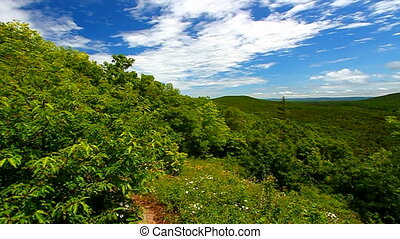 Porcupine Mountains Wilderness State Park is located in...