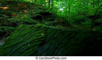 Shades State Park Pearl Canyon - Moss covered boulders rest...
