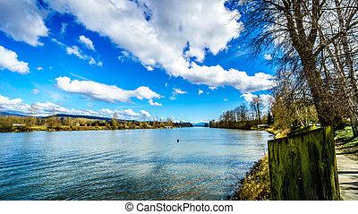 Fraser River at Fort Langley - Fraser River as it Flows past...