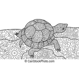 Turtle coloring book for adults vector - Turtle animal...