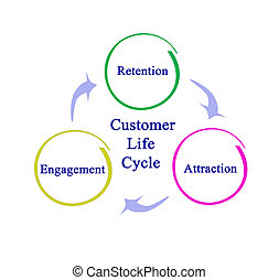 Diagram of Customer Life Cycle