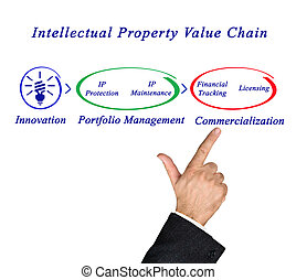Intellectual Property Value Chain