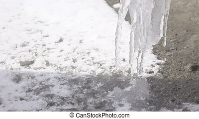 Icicles from dripping water - With melting icicles dripping...