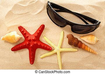 Sunglasses, seastar and seashells in sand closeup