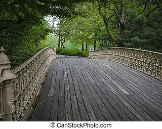 Bridge in Central Park, New York City