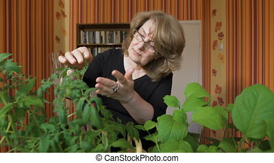 portrait of a woman biologist. It is home to grow new...
