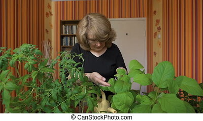 portrait of a woman biologist. It is home to grow new varieties of vegetables.
