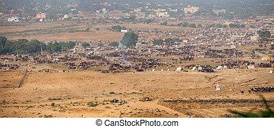 Panarama of Pushkar Camel Fair in India - Overlooking,...
