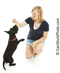 Girl and Dog Do Tricks - Teenage girl teaching her Scotty...