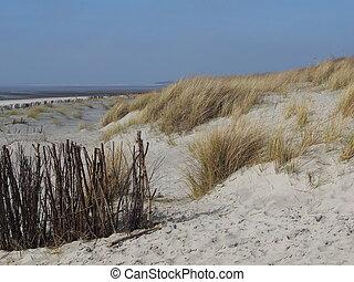 beach of Foehr Island - Island Foehr