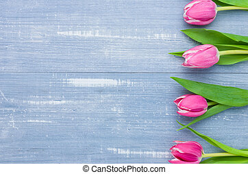 Pink Tulips on a blue background with copyspace