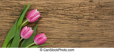 Pink Tulips on a wooden background with copyspace