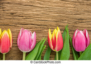 Tulips on a rustic wooden background with copyspace