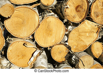 Wood pile in sunset