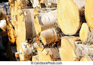 Wood pile diagonal - Wood pile of paper birch logs shot at a...