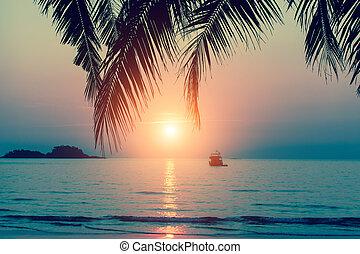 Sunset at tropical sea coast