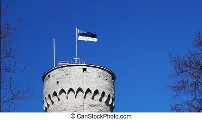 Old Tower with Flag of Estonia - Old historic massive tower...