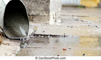 Rain Water Running Out Pipe - Rain Water Running out from an...