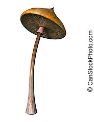 3D Illustration Magic Mushroom on White - 3D illustration of...