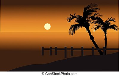 Palm trees on beach and pier silhouette at tthe afternoon