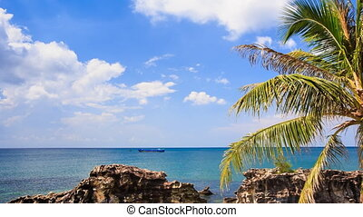 Sea Stones Speckled with Wind Palm Tree on Beach Sky