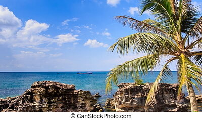 Sea Stones Speckled with Wind Palm Tree on Beach Sky - view...