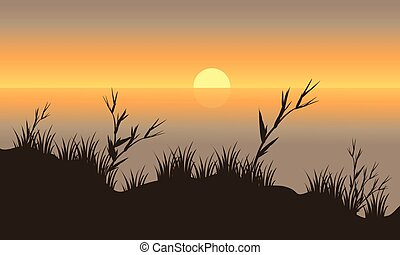 Silhouette beautiful scenery grass
