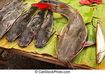 Freshly caught catfish on palm leaf in a fish market, Luang...