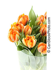 Bunch of orange tulips