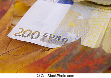 200 euros with leaves in autumn