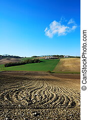 Plowed fields and lines - Agricultural landscape from Molise...