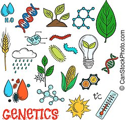 Genetic technologies in agriculture sketches
