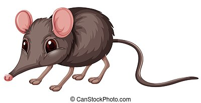Little rat  with gray fur illustration