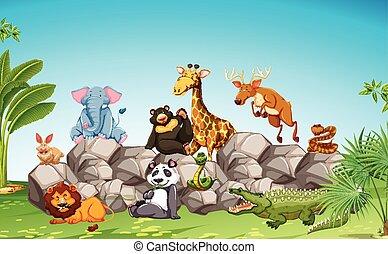 Wild animals sitting on the rock illustration