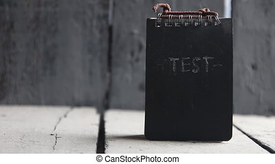 Test idea. Concept exam, survey, testing. - The word TEST....
