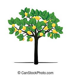Lemon Tree and Fruits. Vector Illustration.