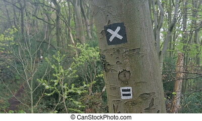 Hiking trail sign on a tree - Signs on a tree show hikers...