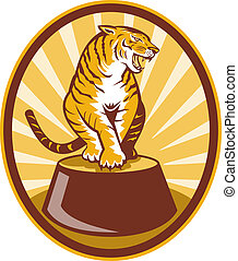 Angry tiger sitting on top of plinth set inside an oval with sunburst