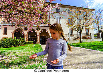 Little girl playing with falling petals of cherry in the...